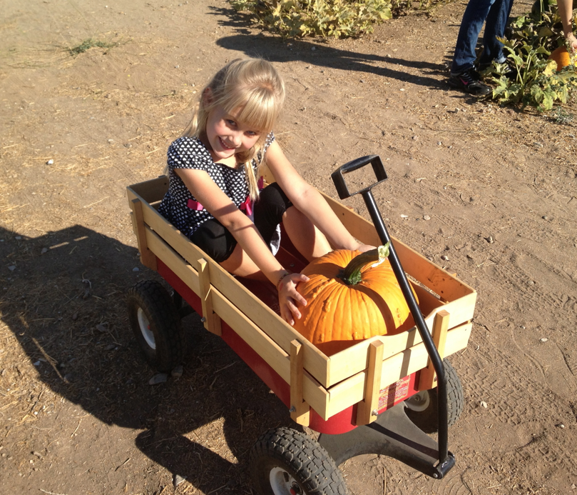 Take a ride through the pumpkin patch