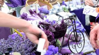 Lavender Festival, Paso Robles, Central Coast Lavender Association