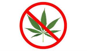 Marijuana Paso Robles