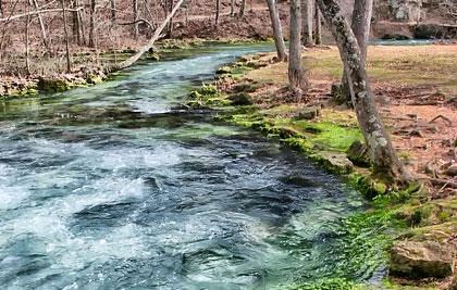 Creek clean up