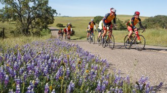 Riders participate in the 7th Annual Tour of Paso cycling event. Courtesy photo.