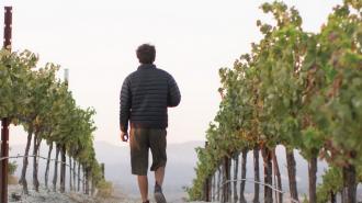 Aaron wines