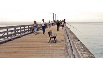 Pier at Cayucos 2