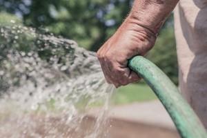 Watering mandate