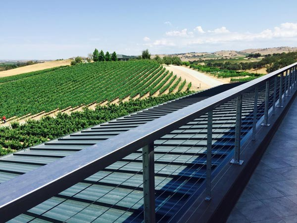 Burbank ranch vineyards