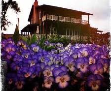 The Honey Oak House. Courtesy photo.