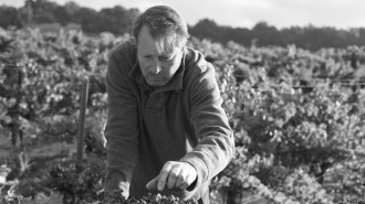 Brecon Estate Winemaker/Owner Damian Grindley. Courtesy photo.