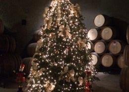 Christmas Tree - Eberle Caves