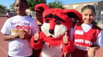 Bauer Speck Bobcat with Friends