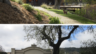 brecon before and after wine paso robles