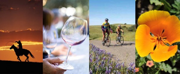 sweet home paso robles photo contest paso robles