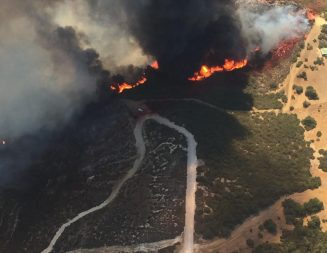 Update: Frazier Fire 50-percent contained at 86 acres