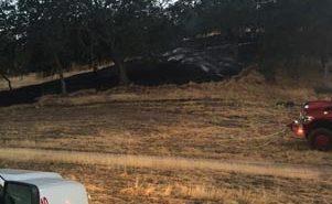 Vegetation fire Paso Robles