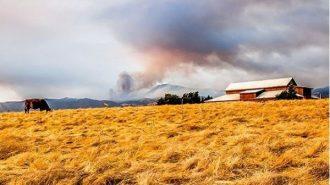 Cal fire pic