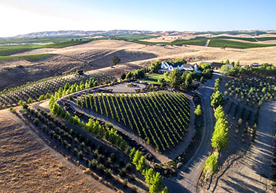 The Rockin' K Ranch includes vineyards planted in a heart shape for his wife, Laura.