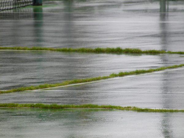 grass on Sherwood Park tennis court
