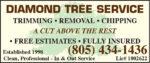 Diamond Tree Svc SP2020.jpg