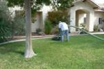 ingram & greene sanitation - septic paso robles - yard.jpg