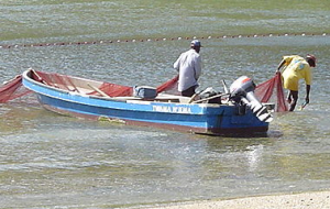 Example of a panga boat