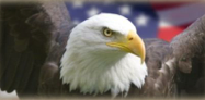 Soaring Eagle Press
