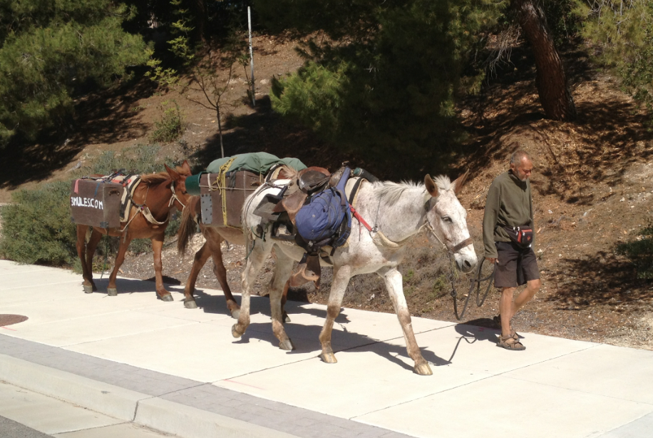 Nomad John Sears, who calls himself 'Mule', arrested by CHP