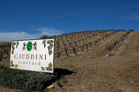 history of paso robles wine region.