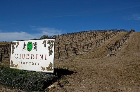 history of paso robles wine region.