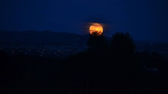 moon over paso robles