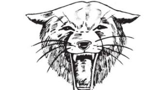 Bearcats fundraiser