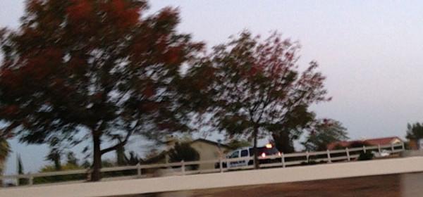 Police-on-Pino-Way
