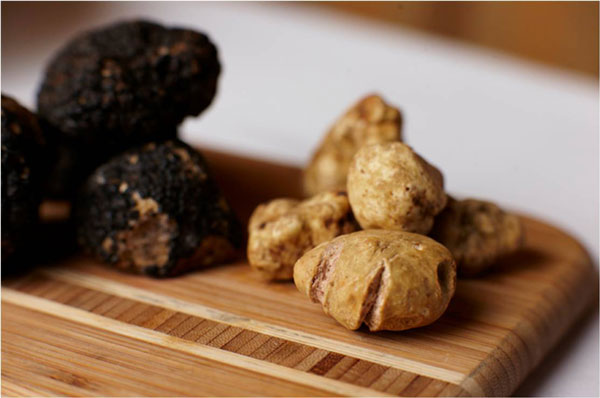 truffles paso robles