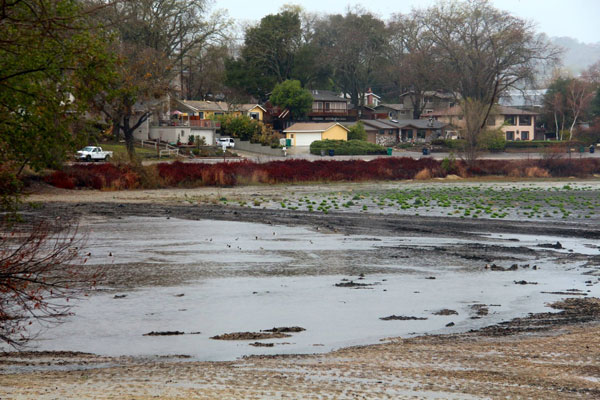 Paso Robles Daily News reader Rick Evans shared this photo of desperately low Atascadero Lake getting some rainfall on Friday.
