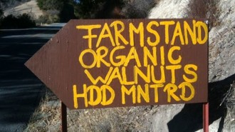 Farmstand Paso Robles