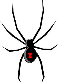 Best pest control services in Paso Robles