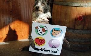 wine 4 paws