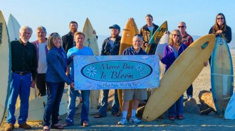 Morro Bay in Bloom Announces The First Annual Surfboard Art Festival