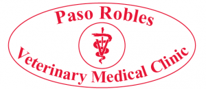Paso Robles Veterinary Medical Clinic, holiday gifts, Paso Robles