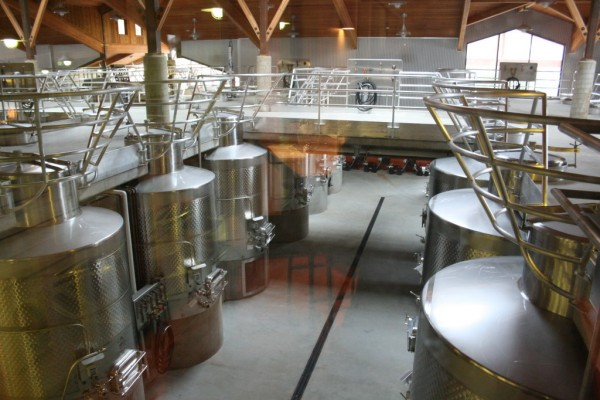 Visible from the lounge through floor to ceiling windows is the multi-level winery which utilizes gravity flow to gently get fruit from de-stemmer to tank.