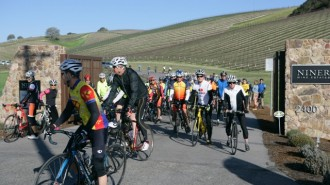 Tour of Paso, The Cancer Support Community, Niner Estates