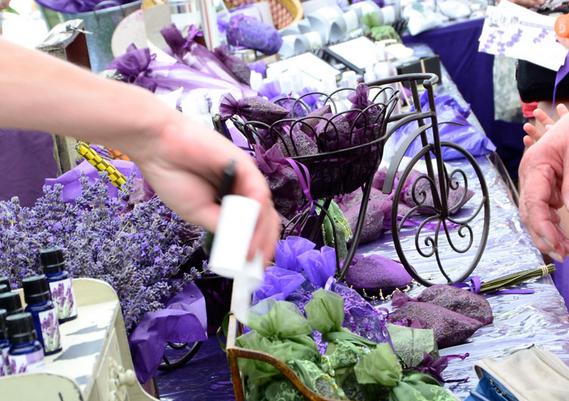 Lavender festival paso robles