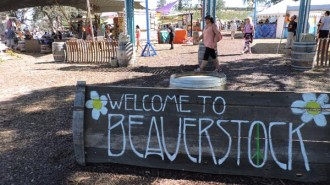 Beaverstock entrance