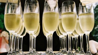 best sparkling wines in paso robles, ca