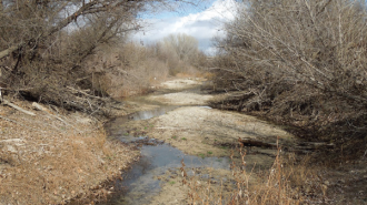 water-basin-atascadero-grant