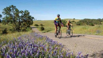 wildflower bike ride
