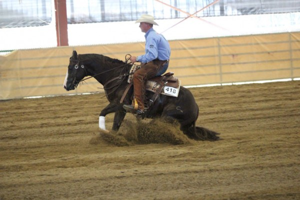 Reining Class from 2015 Mothers Day Classic