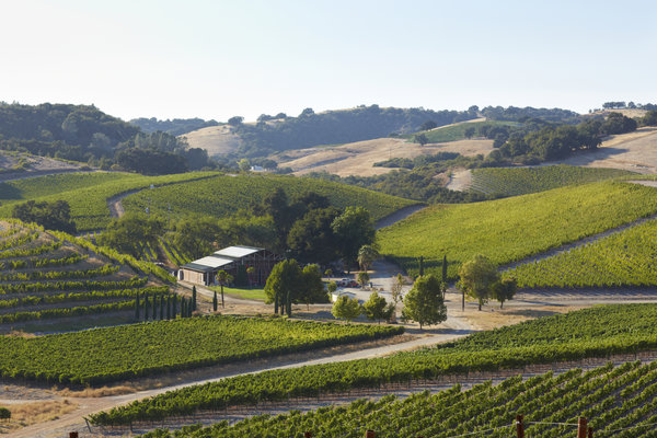 Economic impact of Paso Robles wineries