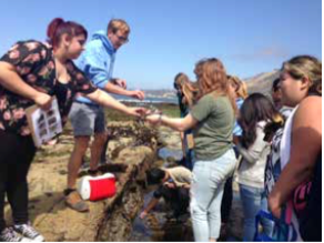 Liberty High Students Explore Tide Pools