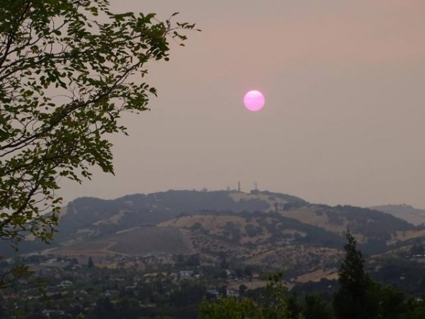 Sun setting over Paso Robles with smoke and ash filling the sky. Photo by David Bouillez.
