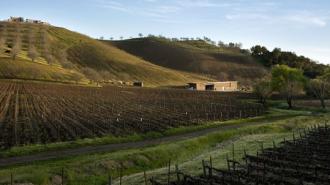 kukkula-winery-paso-robles