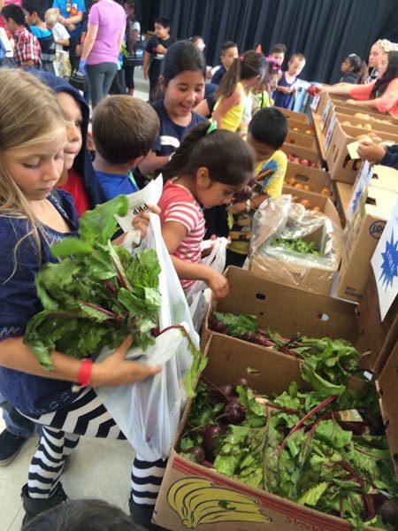 childrens-farmers-market